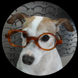optique-durable-super-lunettes